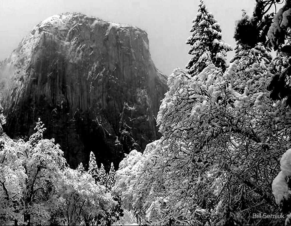 Winter in Yosemite by Bill Serniuk