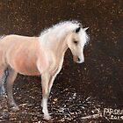 Fairy Pony by Jean Farquhar