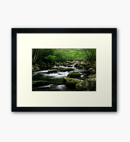 Mossy Mountain Stream Framed Print