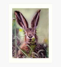 Brown Hare Art Print