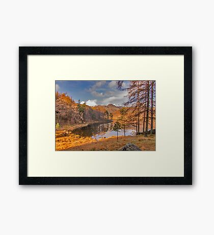 Autumn at Blea Tarn Framed Print