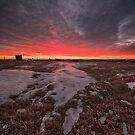 Wascana Dawn by IanMcGregor