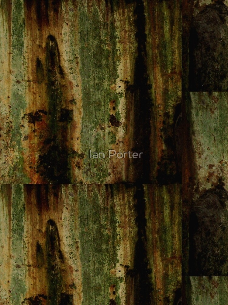 Mouldy Castle Wall by procrest