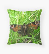 Tattered Wings Throw Pillow
