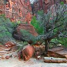 Zion Landscape by mokreations