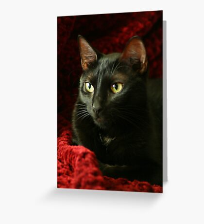 Lying In Crimson Greeting Card
