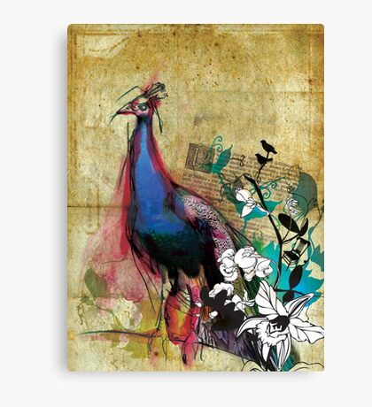 king peacock Canvas Print