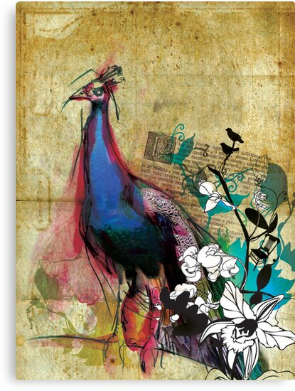 king peacock by Narelle Craven