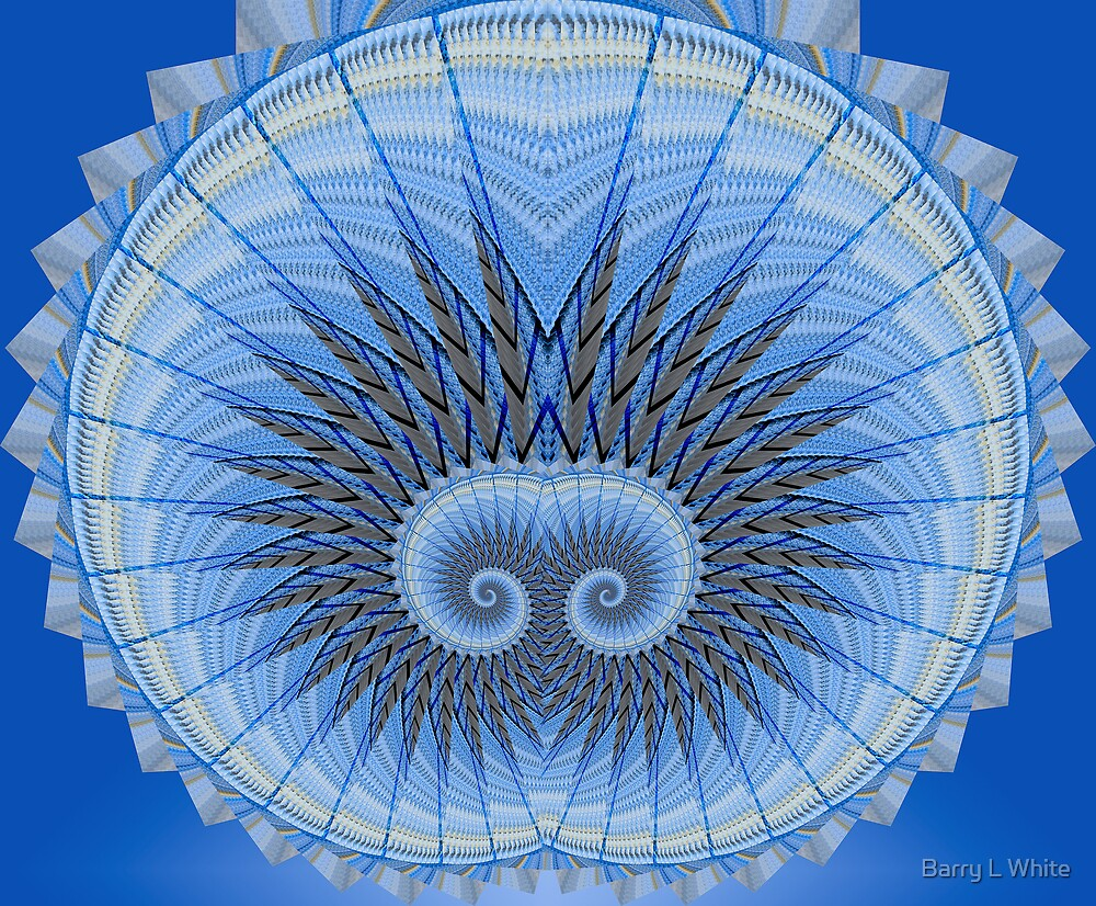 Spiral Mania 5 by Barry L White