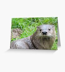 Courageous In Character Greeting Card