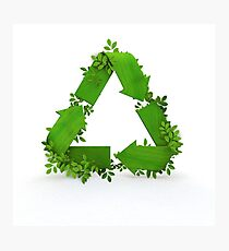 recycling symbol and leaves Photographic Print