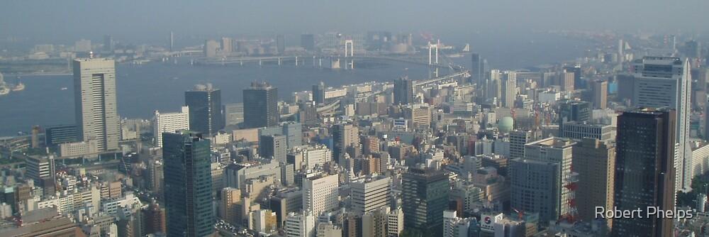 Tokyo Skyline by Robert Phelps