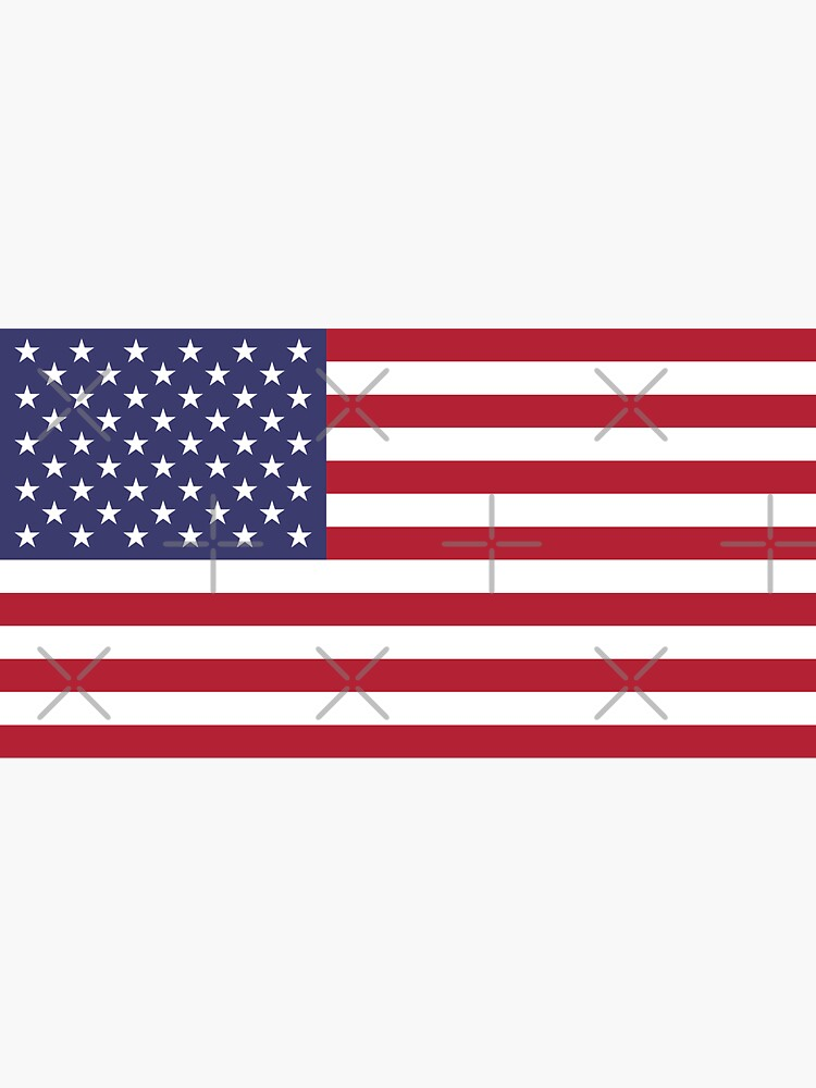 USA Flag by states