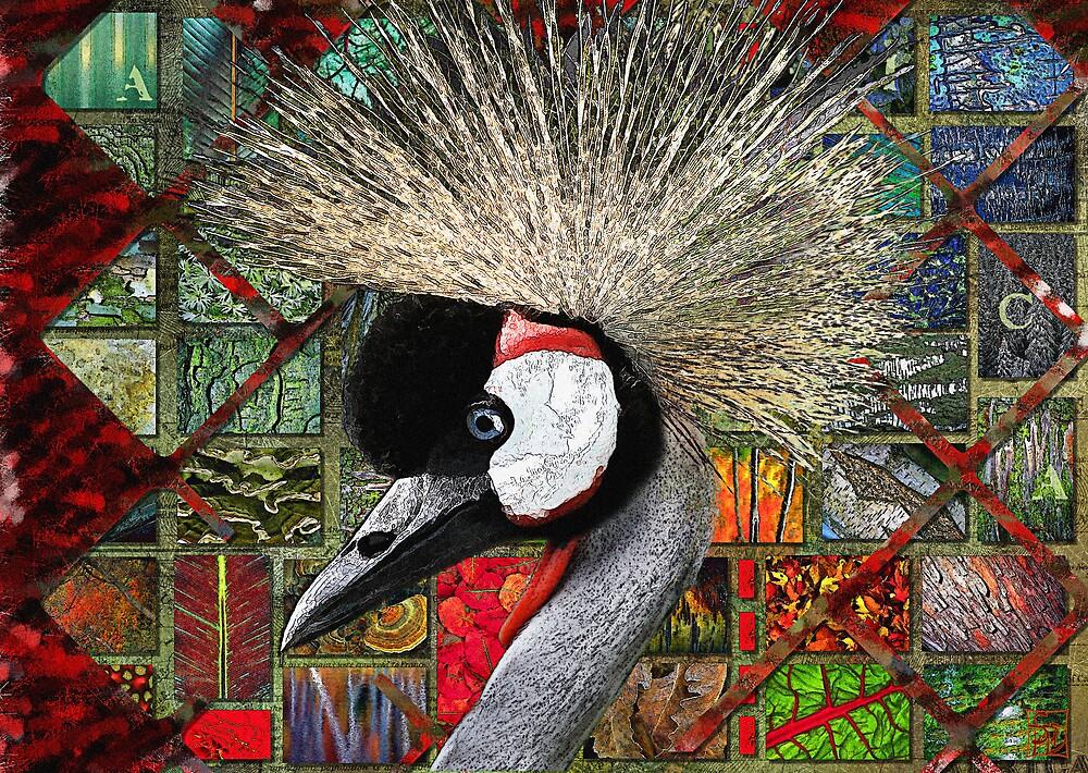 African Crowned Crane by Sabine Spiesser