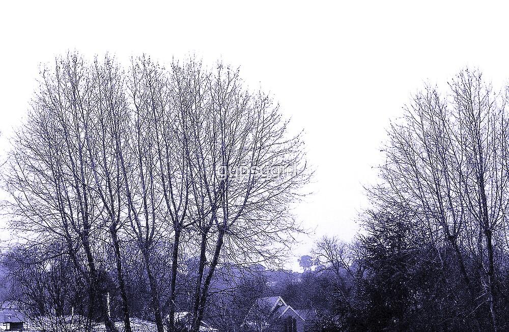 Winter Blues by gypsygirl