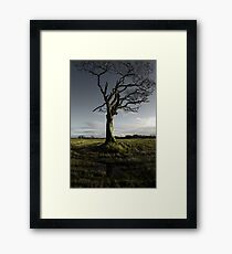 Rihanna Tree, Singing Framed Print