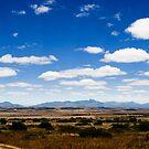 Desolate South Africa by Viv van der Holst