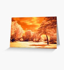 If The Trees Could Talk Greeting Card