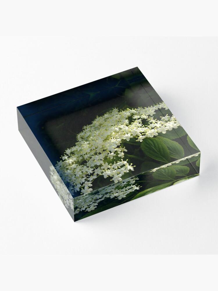Alternate view of Elder Acrylic Block