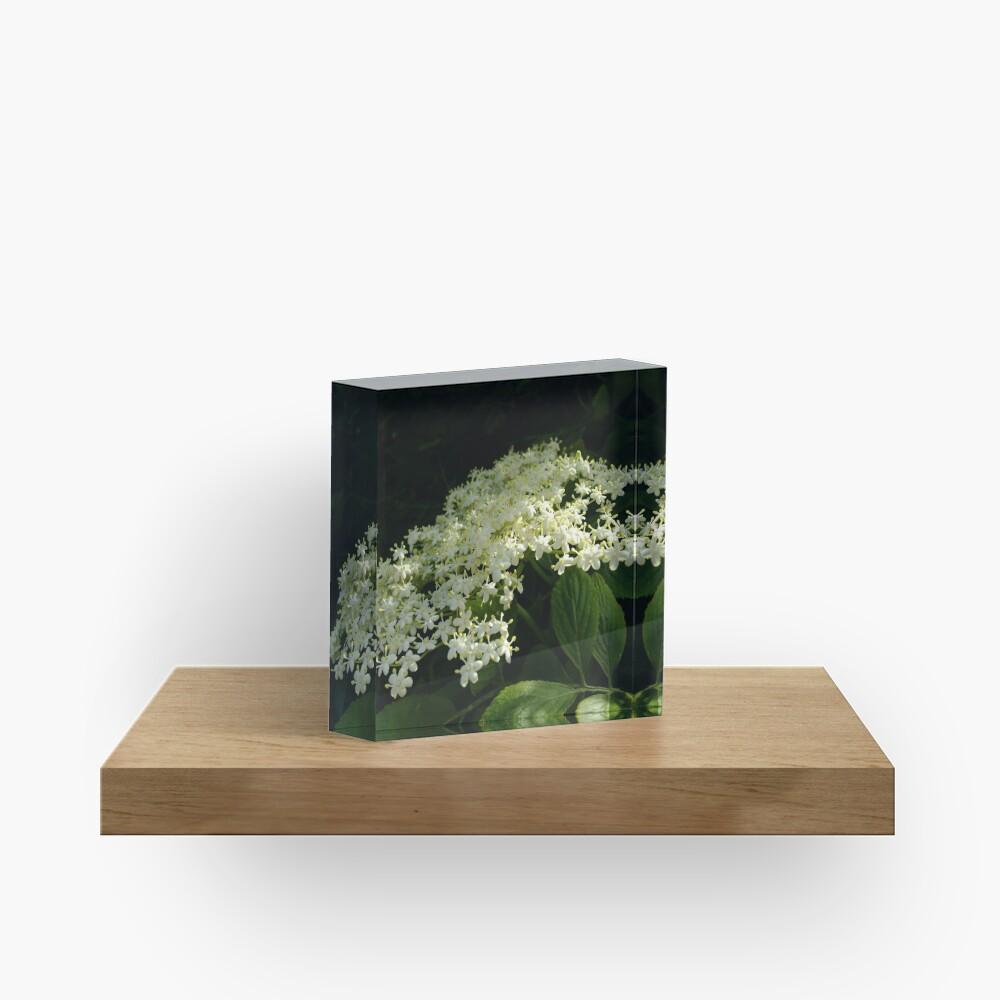 Elder Acrylic Block