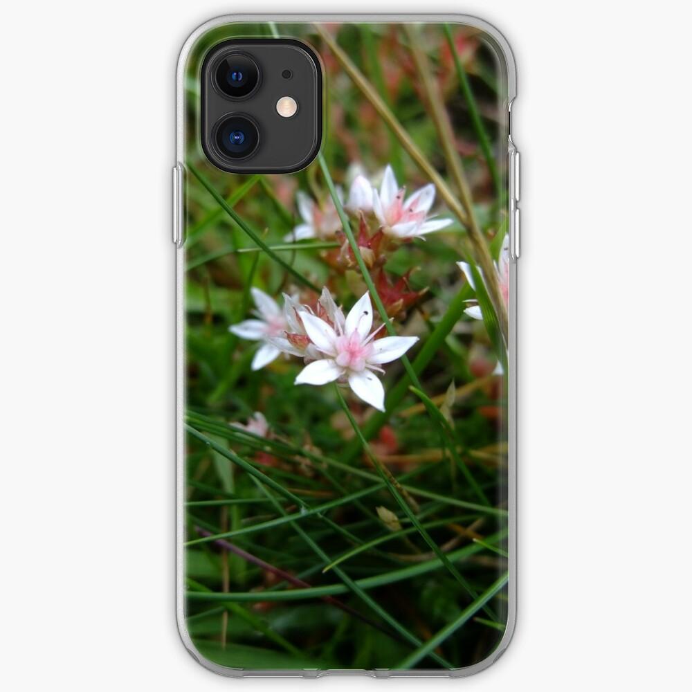 English stonecrop iPhone Case & Cover