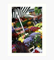 London's finest flowers Art Print