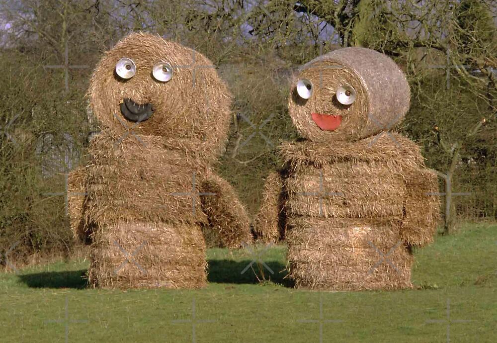 Hay, I love you by mervynw