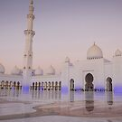 Sheikh Zayed Grand Mosque at night by milena boeva