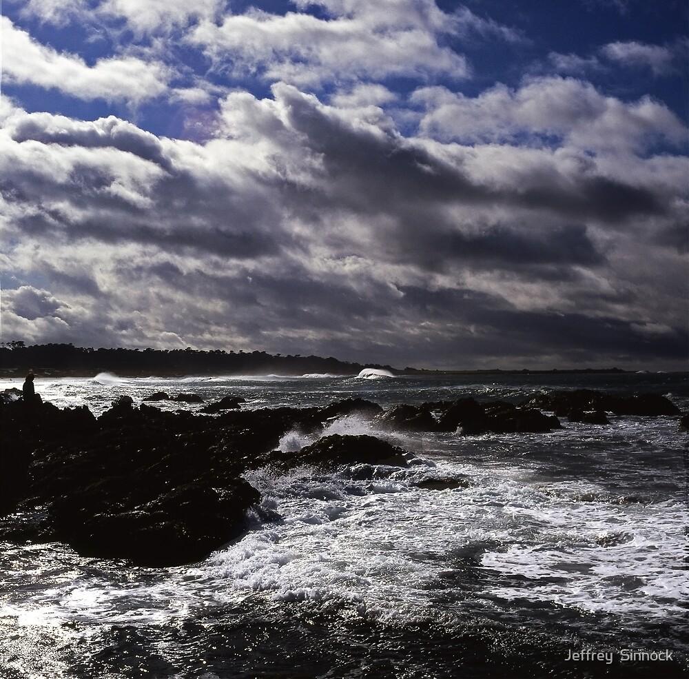 winter storm by Jeffrey  Sinnock