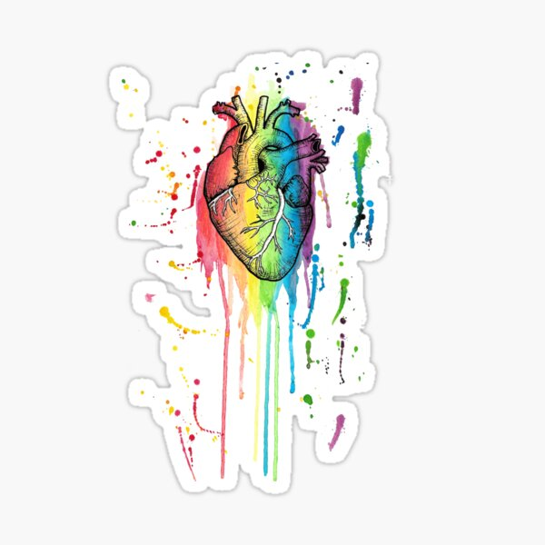 Watercolour and Pen Rainbow Anatomical Heart Sticker
