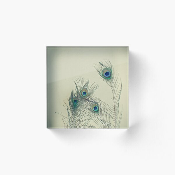 All Eyes Are on You  Acrylic Block