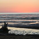 sunset mud flats by kristy-may  Tisdell