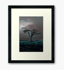 Rihanna Tree, Angry Framed Print