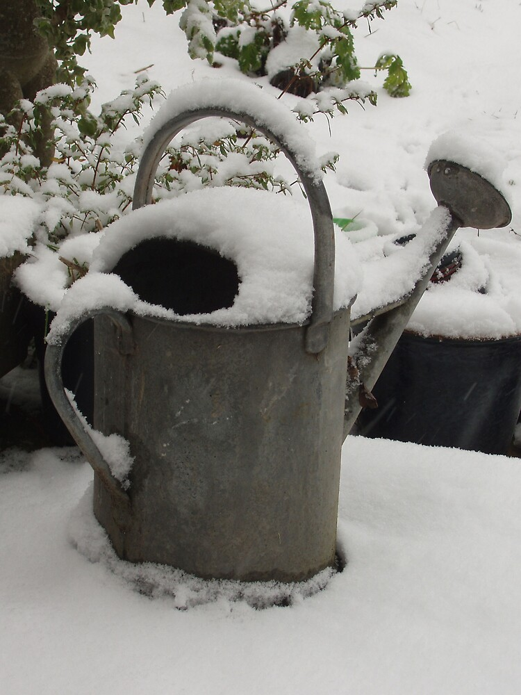 Watering can in th esnow by Frances Knight