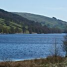 Gouthwaite Reservoir by WatscapePhoto