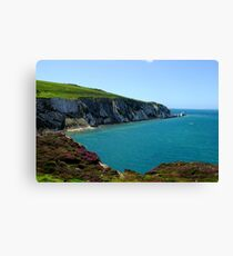 needles at alum bay Canvas Print