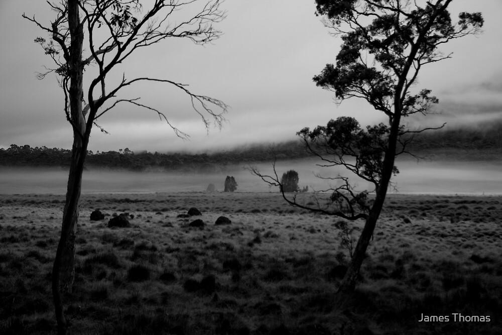Pelion Plain by James Thomas