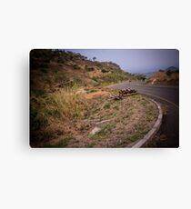 Malawian highway Canvas Print