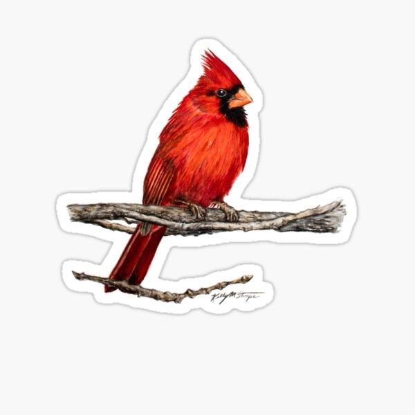 Male Northern Cardinal Wildlife Bird Art Sticker