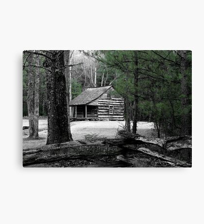 Carter Shields Cabin VIII Canvas Print