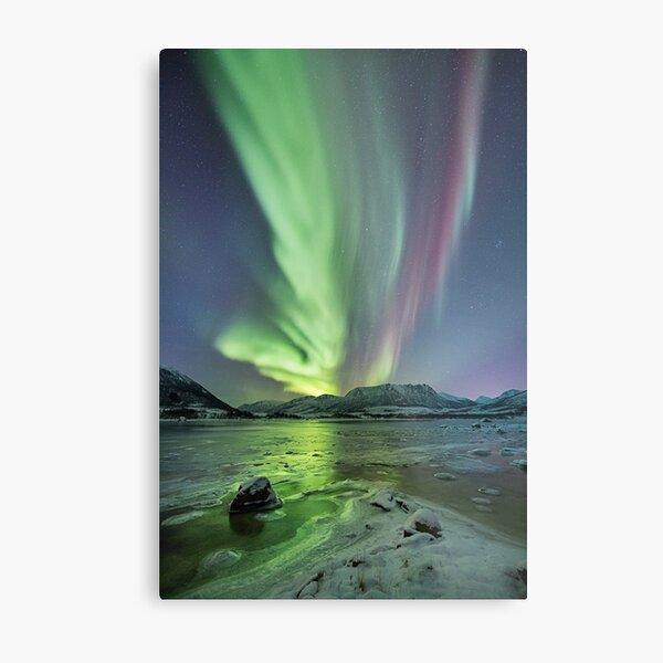 Raising Aurora Metal Print