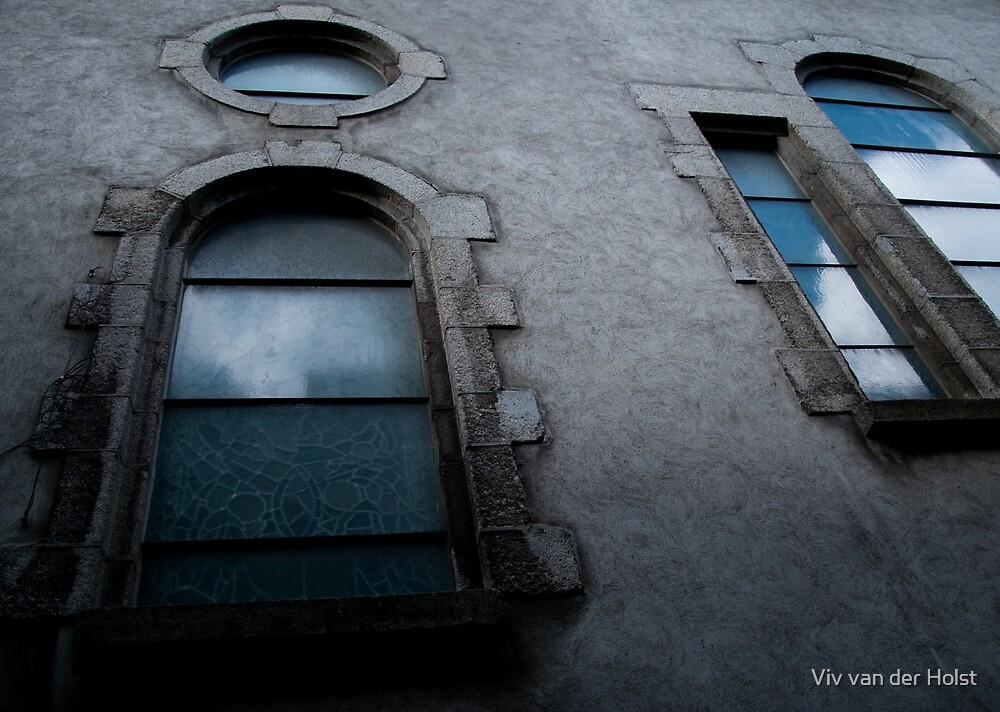 Window by Viv van der Holst