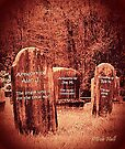 """""""Bubble Hill Cemetery, an Inside View""""... prints and products by Bob Hall©"""