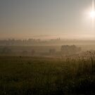 Foggy morning, Poland by Viv van der Holst