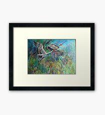 Wetland Framed Print