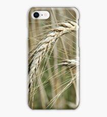 Barley iPhone Case/Skin