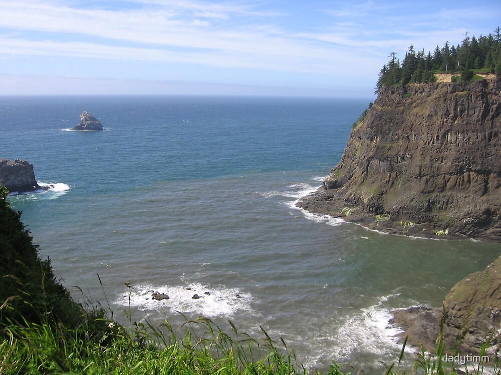 Oregon Coast by ladytimm