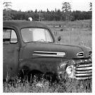 Old Truck - b&w by Danita Hickson