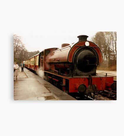 Haiverthwaite Steam Train Canvas Print
