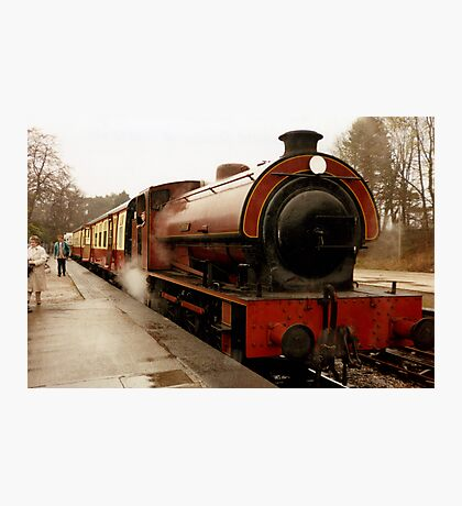 Haiverthwaite Steam Train Photographic Print